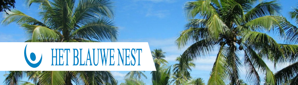 Het Blauwe Nest
